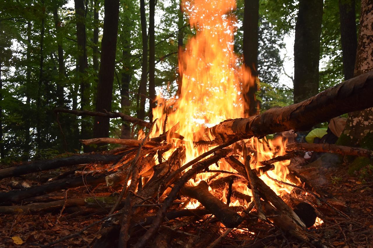 Waldbrand  Luzern ruft zur Vorsicht